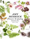 Amy Merrick's Blog